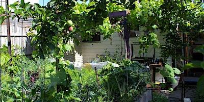 Building a Climate Resilient Garden