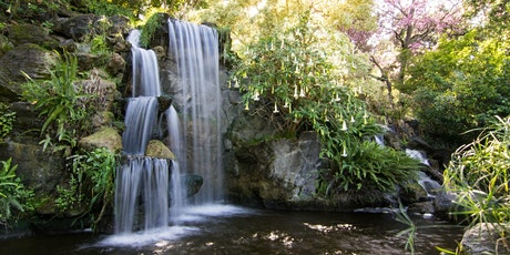 """""""Out & About"""" The Arboretum Botanical Garden Visit tickets"""