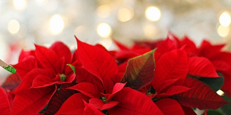 Probus Club Christmas Party tickets
