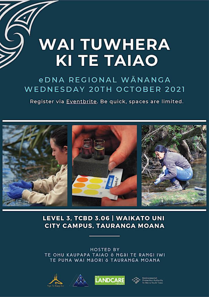 Making your data meaningful - a Wai Tūwhera o te Taiao regional wānanga image