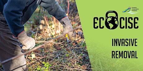 Ecocise Invasive  Species Removal tickets