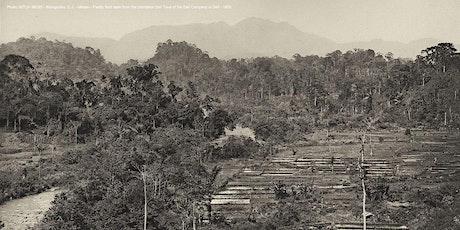 Heritage Webinar Series 2: Het Gouden Tijdperk van de Plantage-Industrie tickets