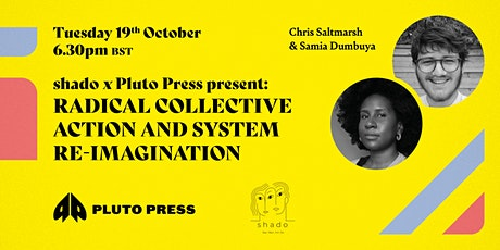 Radical collective action and system re-imagination tickets