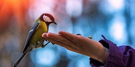 Saturday Science Club Abingdon - Feed the birds tickets