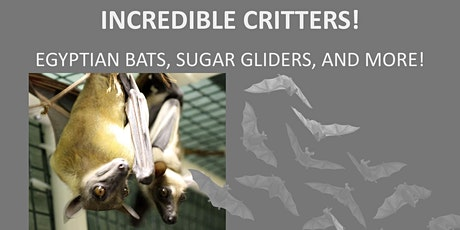 Incredible Critters-Live Animal Program! tickets