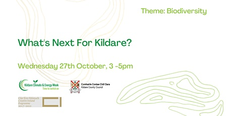 What's Next for Kildare? tickets