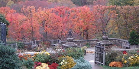 Dumbarton Oaks Gardens Timed Entry Tickets - Winter tickets