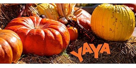 YAYA Family Arts: Fall Festival tickets