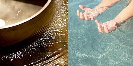 Taller de Sonido, Vibración y Resonancia entradas