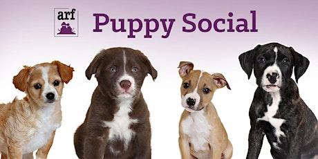 ARF Puppy Social tickets