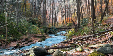 Fall Foliage Hike @ Delaware Water Gap (Saturday, October 30) tickets