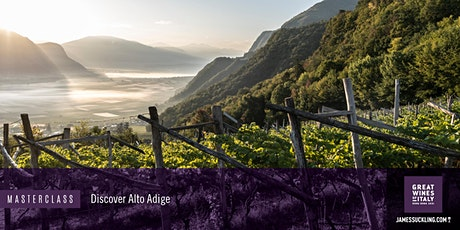 Great Wines of Italy Masterclass: Discover the Wines of Alto Adige tickets