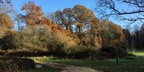 Weekly Health Walk on Southampton Common tickets