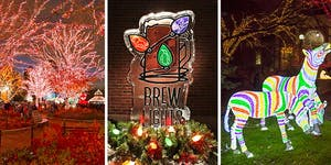 BrewLights at Lincoln Park Zoo - Presented by Louis...