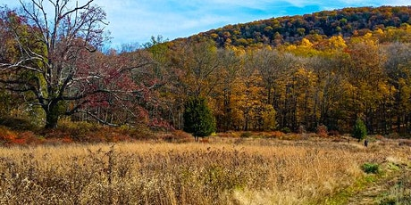 Fall Hiking & Trail Cleanup (Pay What You Can) tickets