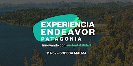 Experiencia Endeavor Patagonia 2021 tickets