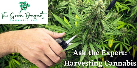 Ask the Expert- Harvesting Cannabis tickets