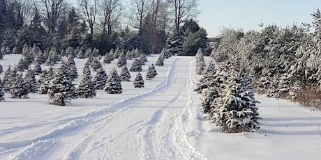 Day Trail Pass at Elliott Tree Farm tickets