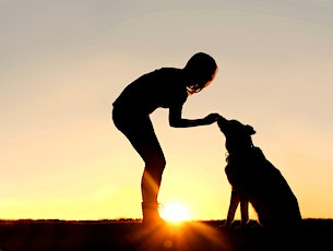 Free, online discovery session - How to Become a Dog Trainer tickets