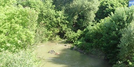 Community Nature Walk w. Black Creek Alliance tickets