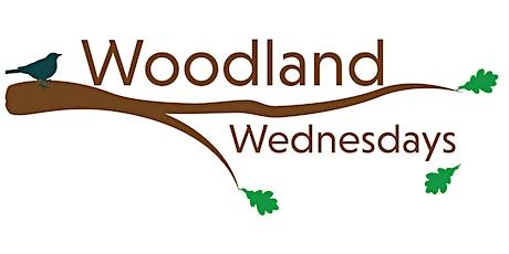 No Tricks, All Treats! Woodland Wednesdays Arboretum Adventures tickets