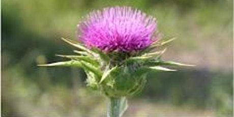Weeds Management Workshop tickets