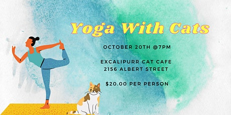 Yoga with Cats - October 20th tickets