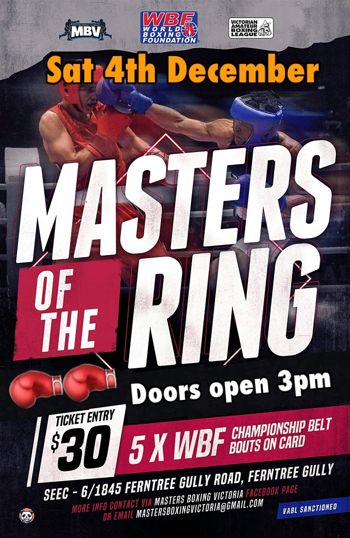 Masters of the Ring - Boxing Show image