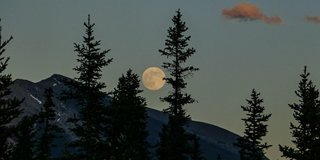 October Full Moon Ceremony with Sacred Aromatherapy with Sheridan Semple tickets