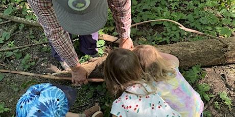 Fall Forest Saplings Family Program tickets