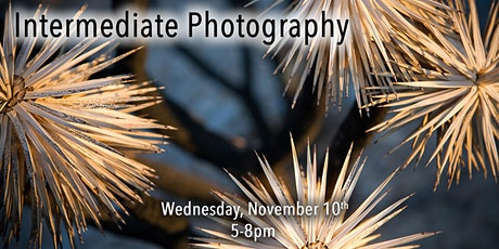 Intermediate Photography - In Store Class - Roseville CA tickets