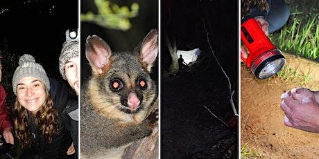 Moth Night & Wildlife Hike tickets