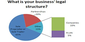 Build your business Structure