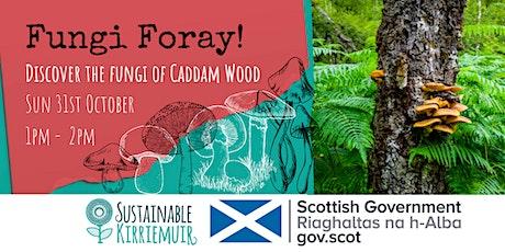 Fungi Foray at Caddam Wood tickets