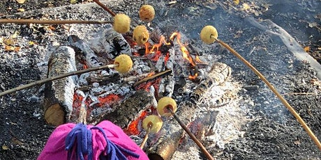 Sticky Campfire Apples and Survival Dens at Ryton Pools Country Park tickets