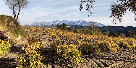 Meet the Winemaker: Raventós i Blanc, Cataluña tickets