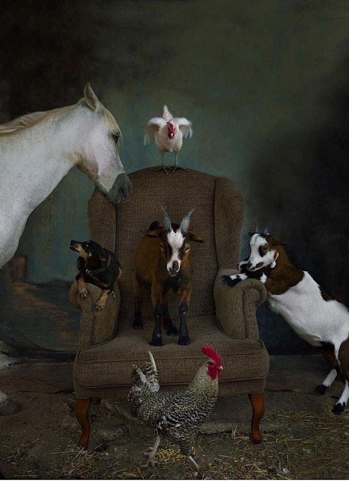 """Imagen de Exposición """"EL ANIMAL QUE LLEVO DENTRO""""  Laura León"""
