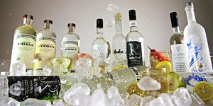 Vodka Rocks Tasting Experience