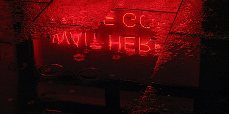 Corridor of Light: Text in the Landscape: Tim Etchells (UK) and joins Sabin tickets