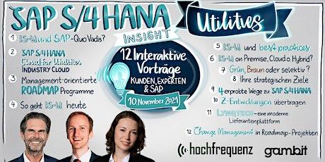 SAP S/4HANA Utilities Insight - Alles was Sie wissen müssen Tickets
