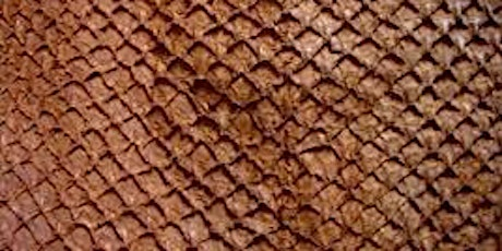 Fish skin Tanning: Make your own leather out of fish skin! tickets