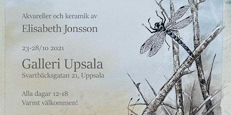 Elisabeth Jonsson - Flora-Fauna-Fantasi - Akvareller o Keramik biljetter