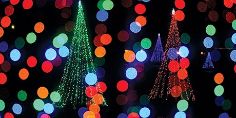 Trees of Light Boat Tours 2021 tickets