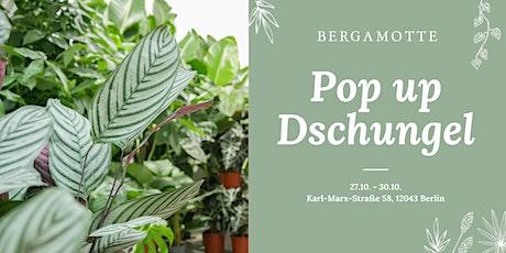 Bergamotte Pop Up Dschungel // Berlin Tickets