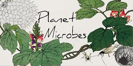 Planet Microbes: Environmental Microbiology Discussion Group [HYBRID] tickets