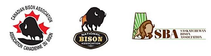 International Bison Convention image