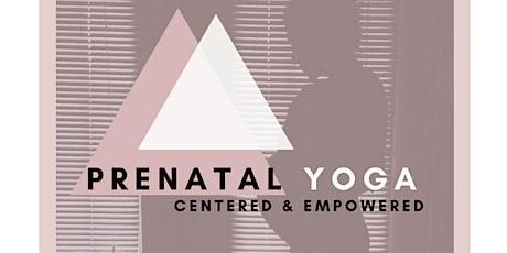 Prenatal Yoga Workshop tickets