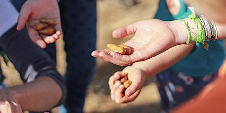 Community Oak Planting Day tickets
