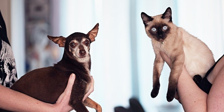 Pet Disaster Preparedness - Virtual Class tickets