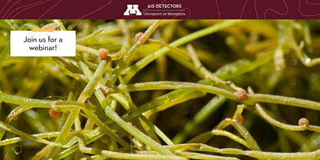 Understanding Starry Stonewort Invasions in a Changing Climate tickets